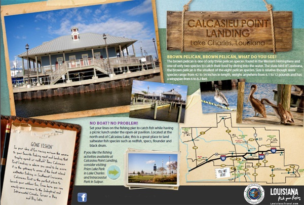Calcasieu Point Banner
