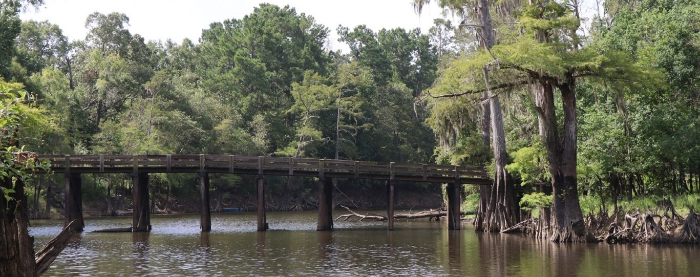 Alligator Park Bridge (2)