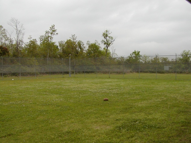 Fenced Rec Yard