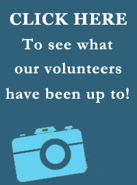 Click here to see the Medical Reserve Corps Photo Gallery