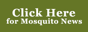 Click here for Mosquito News