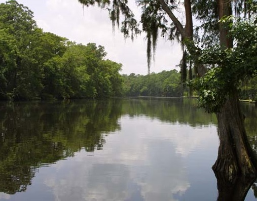 Calcasieu_River